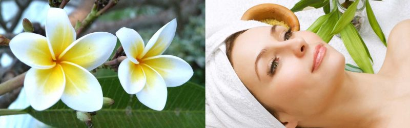 Deep Tissue Massage in Wellington CBD