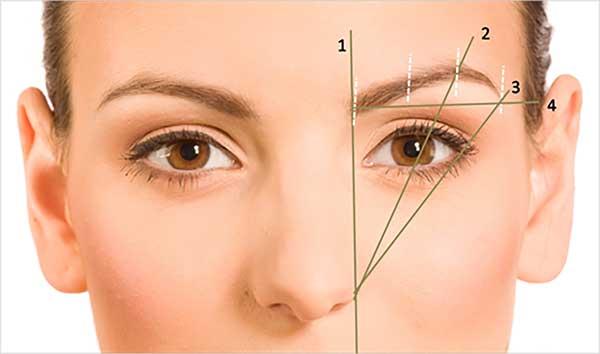 Precision Eyebrows